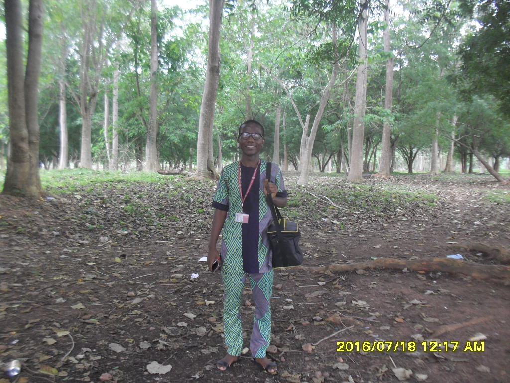 "alt= ""a tree plantation in mapoly"""