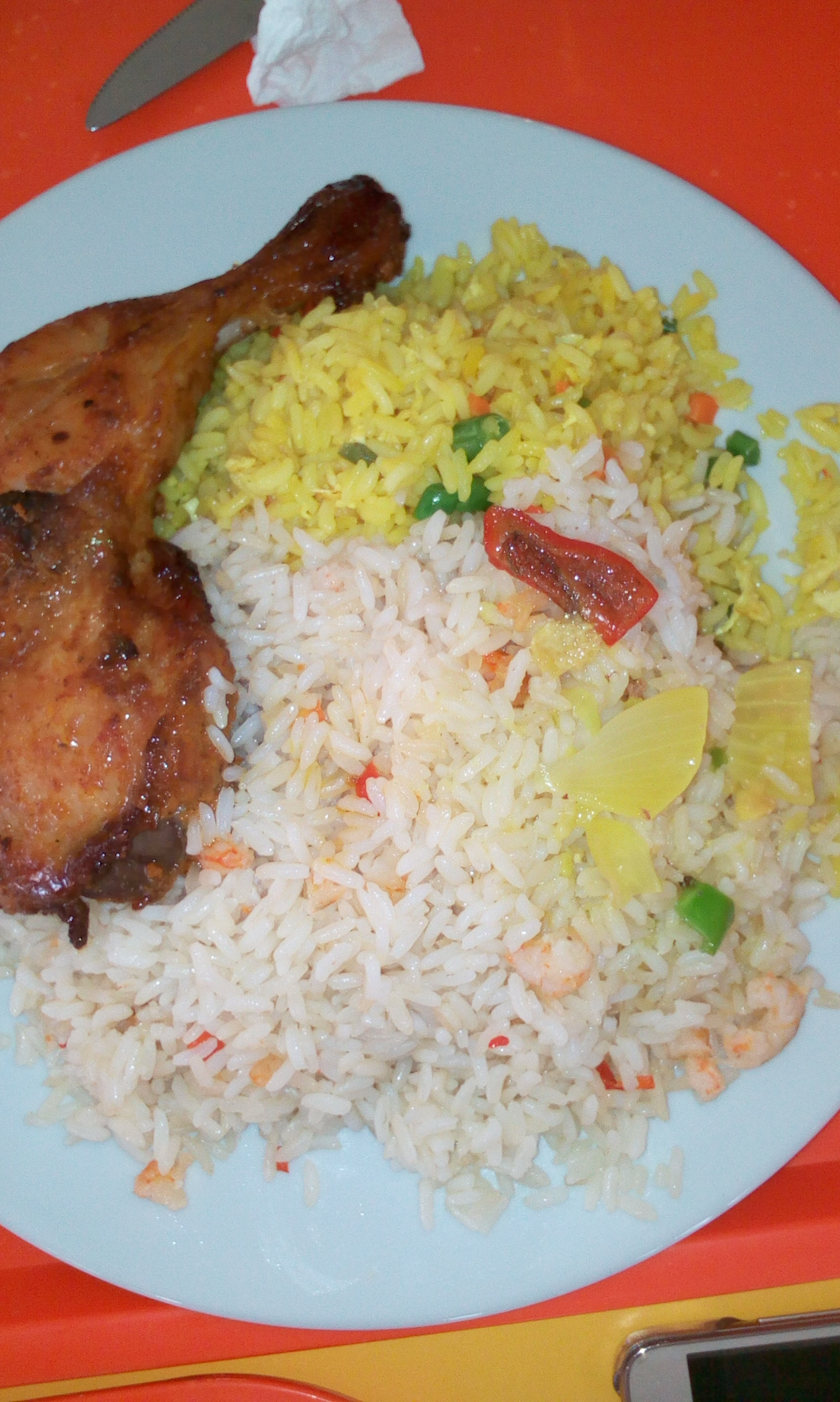Mega Rice and Chicken