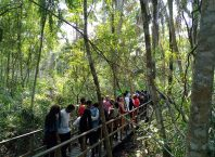 People waiting in line to use the canopy walkway at Lekki conservation centre